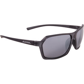 Alpina Finety Okulary, smoke transparent